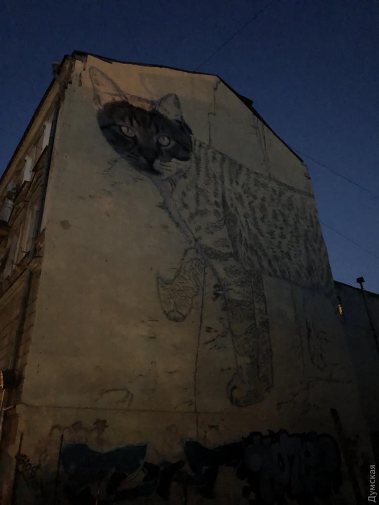 Новый мурал: американская художница украшает стену дома на Бунина огромным котом