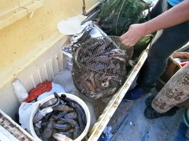 Рыбаки, заплывшие «за буйки», расплатились 6-ю протоколами и штрафом, фото-5