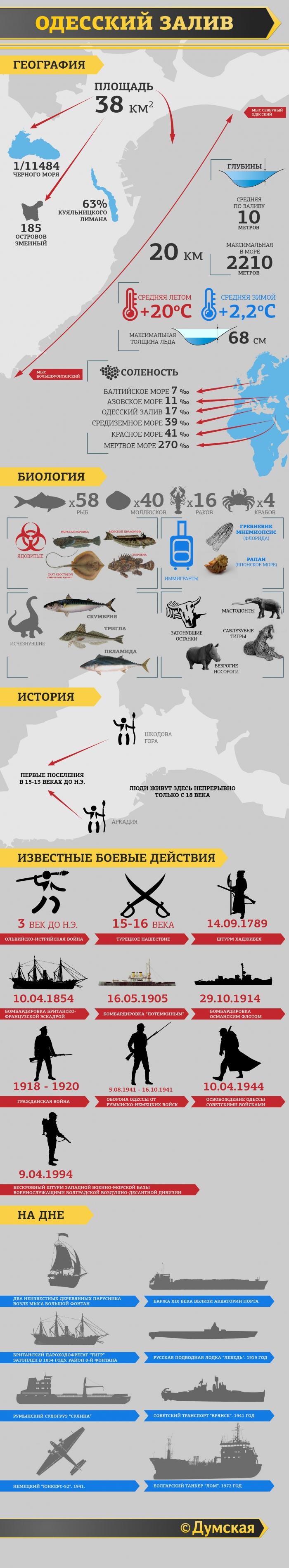 http://dumskaya.net/pics/a3/picturepicture_37454239156934_96203.jpg