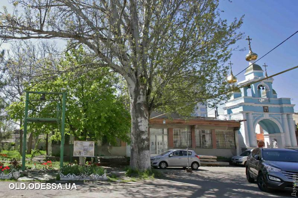 Здесь и ниже - фото old.odessa.ua