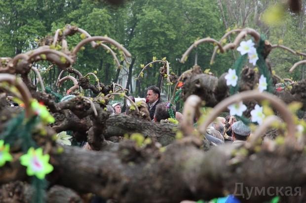 40 кадров: как одесситы поминали погибших 2 мая на Куликовом, фото-15