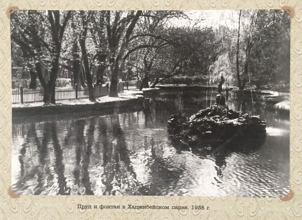 Таким пруд был перед войной