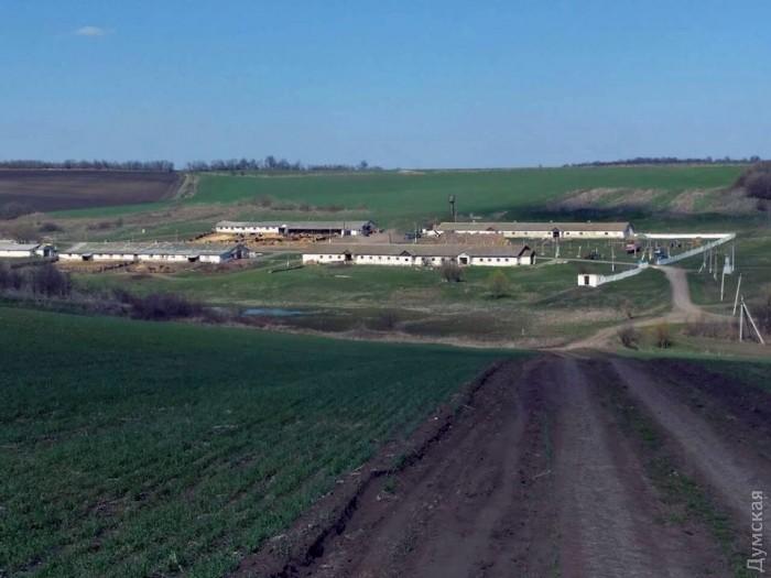 Ферма Лазаренко