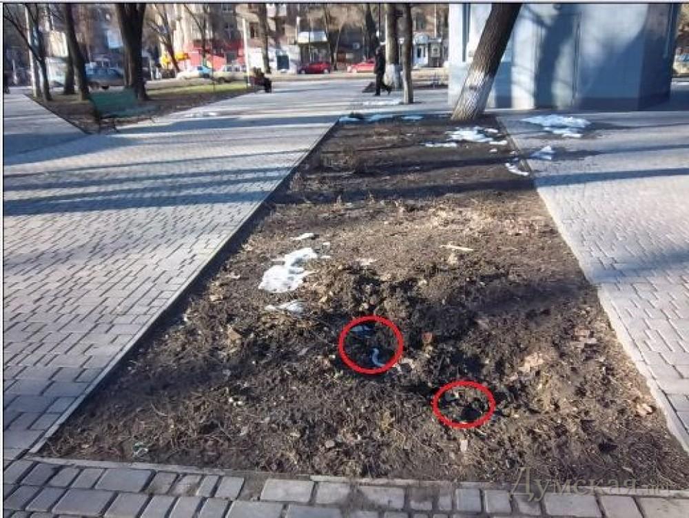 Самое большое что русские украли на отдыхе фото 139-308