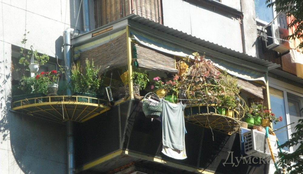 В приморском районе одессы определили самый зеленый балкон н.