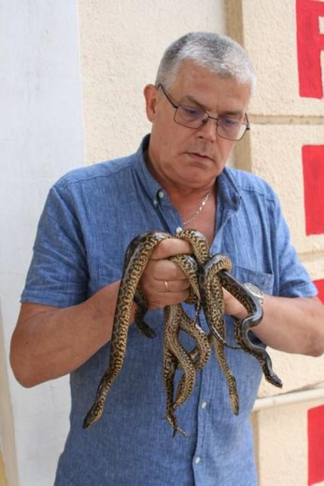 Картинки по запросу Одесский зоопарк змеи