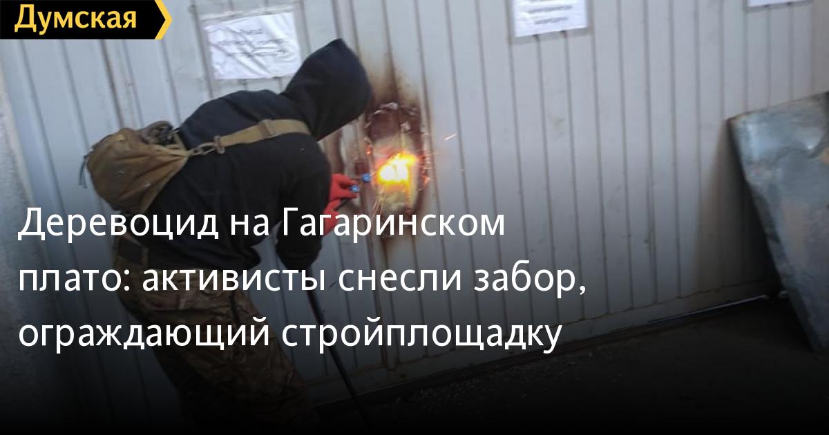 Деревоцид на Гагаринском плато: активисты снесли забор, ограждающий ст
