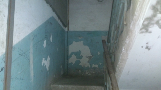 Секретарь Одесского горсовета живет в «свинарнике»?, фото-2