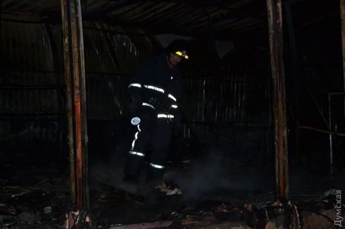 picturepicture_95898633138976_29149 Спасатели сообщили подробности масштабного пожара на поселке Котовского в Одессе