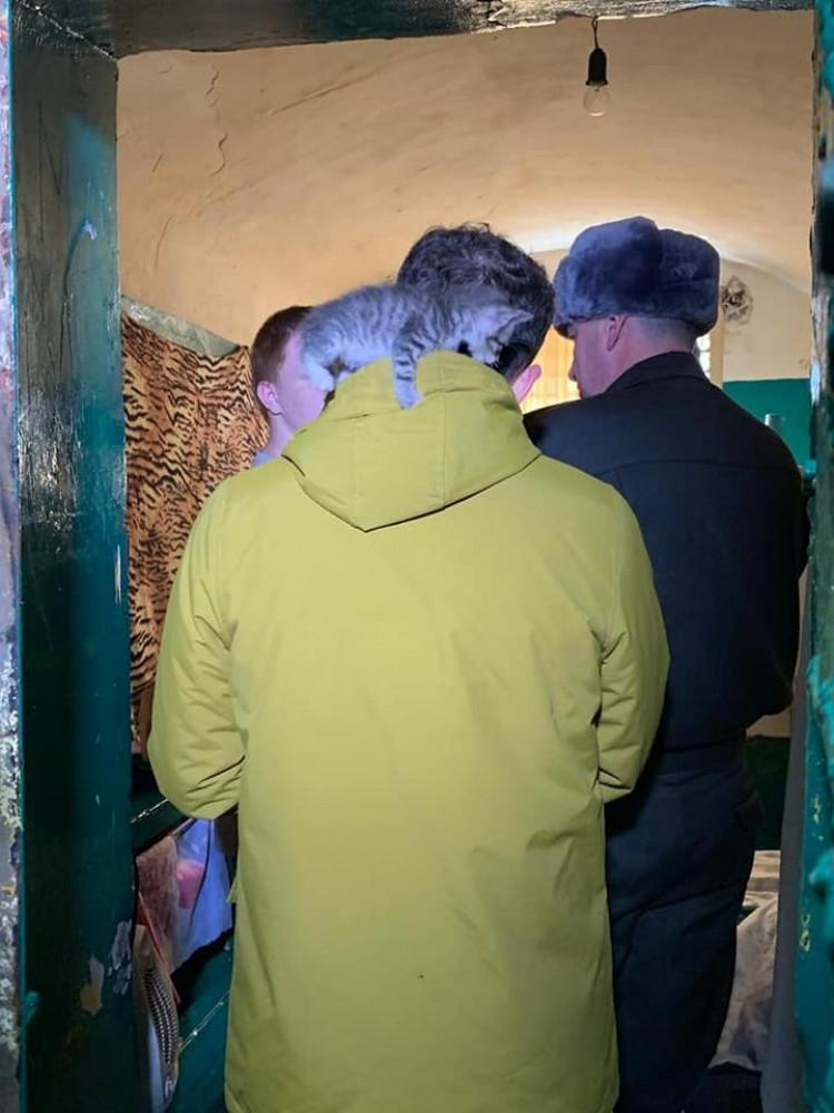Министр разрешил тюремному котенку вскарабкаться на себя