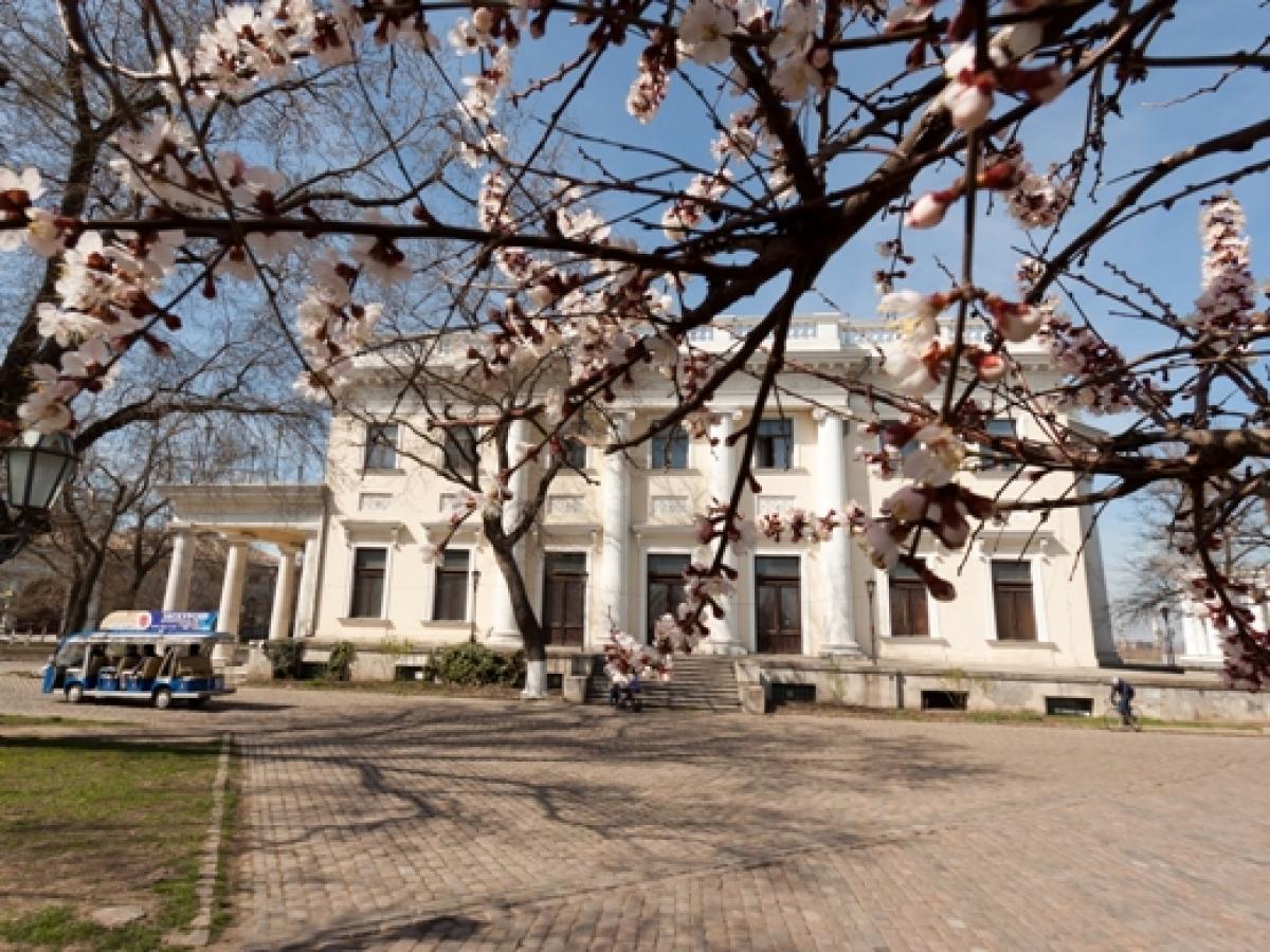 воронцовский дворец в одессе фото получения высшего