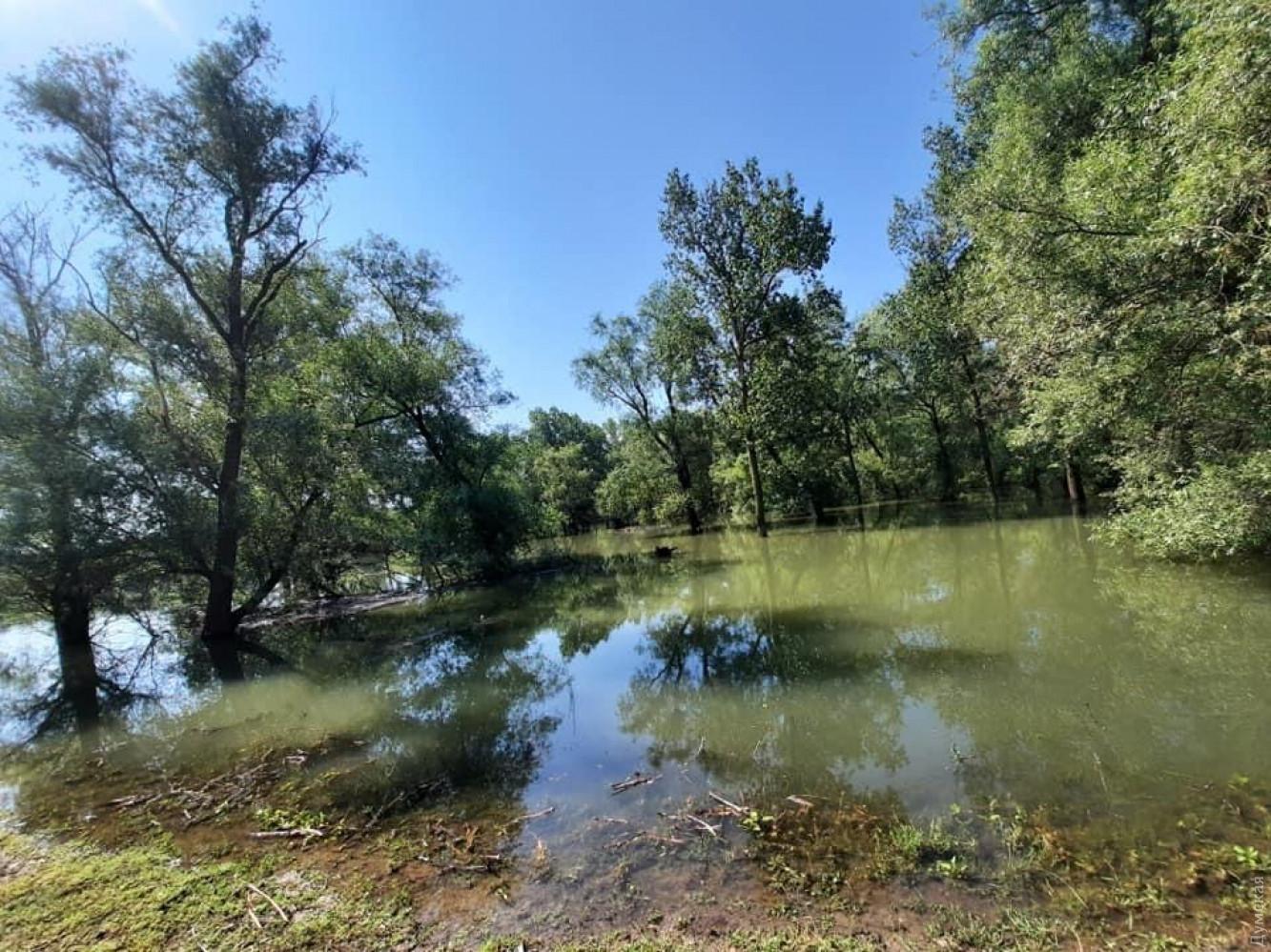 Фото — Бассейнового управления водных ресурсов рек Причерноморья и нижнего Дуная