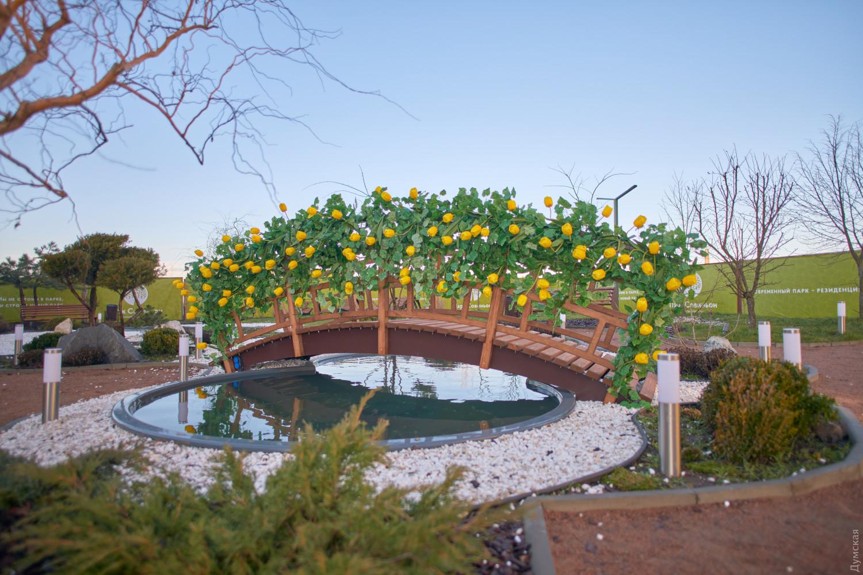 В «Парке Совиньон» провели праздник ко Дню всех влюбленных, фото-4